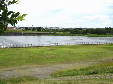 川崎 緑化 センター